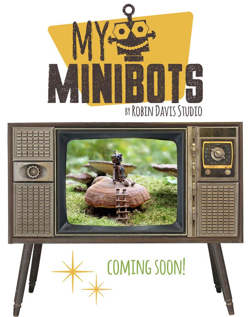 My Minibots Show Robin Davis Studio